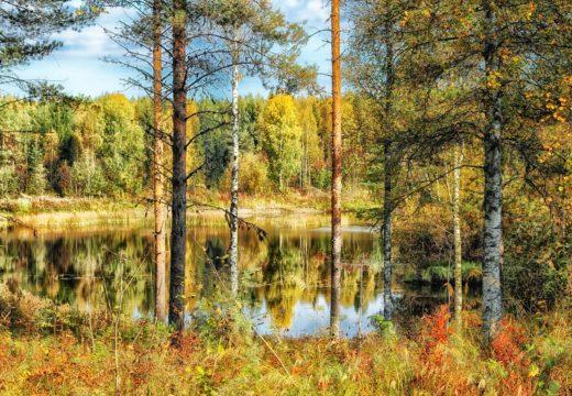 finland-185853_1280