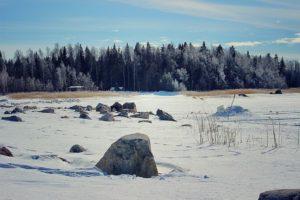 Talvi 2018 – Winter Edition