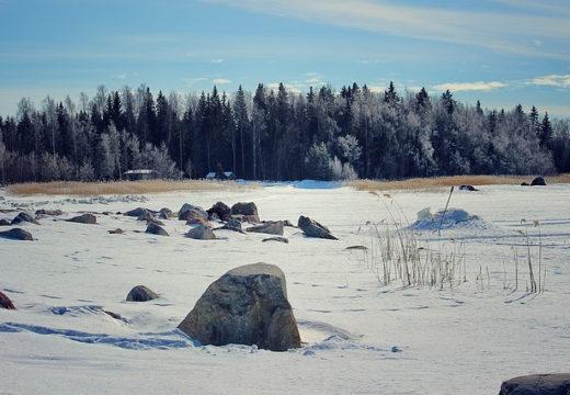 Talvi 2018 - Winter Edition